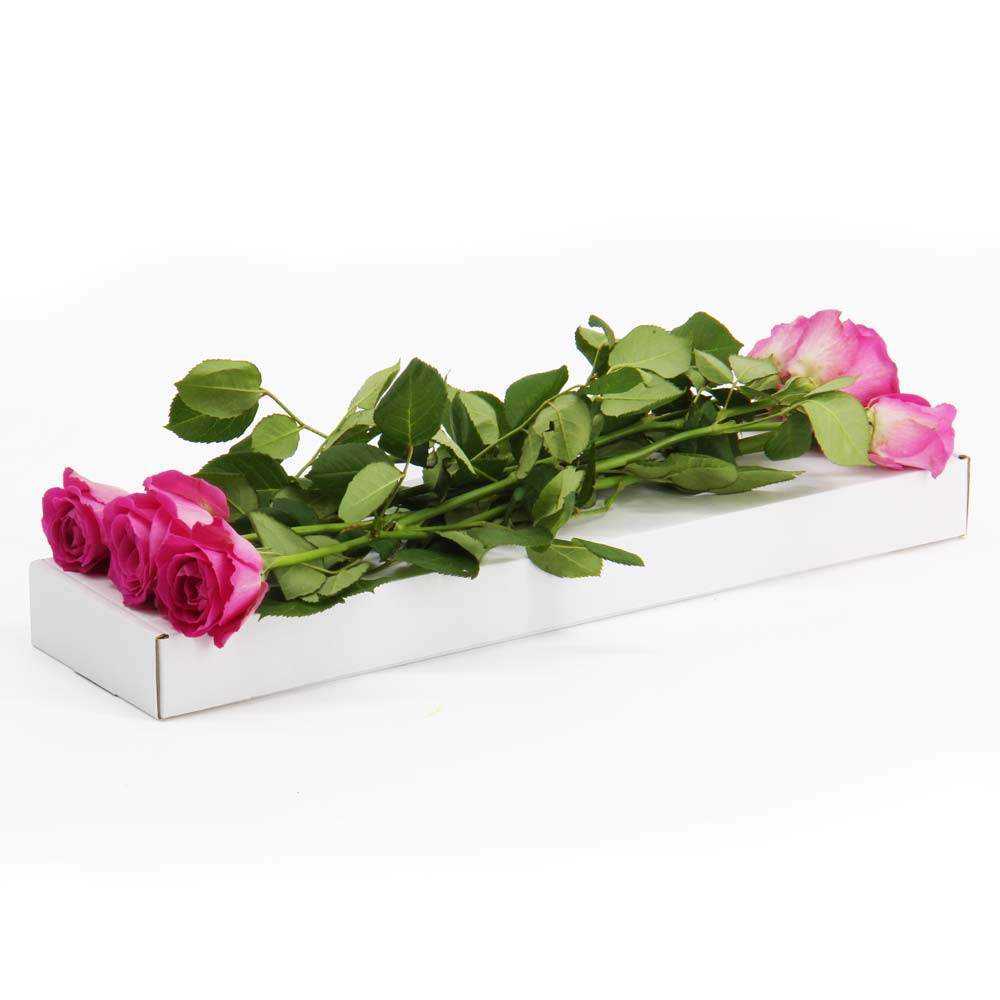 Flower Mailing Boxes for Online Flower Shops